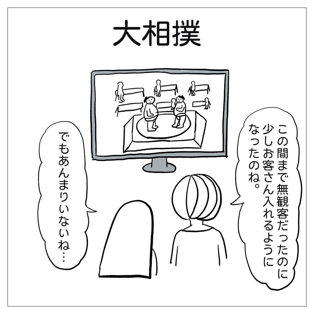 大相撲をテレビでみている
