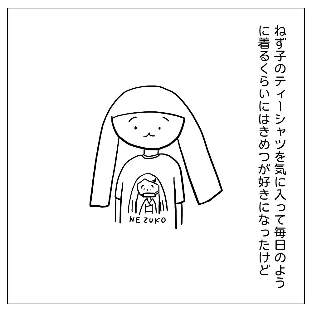 きめつのTシャツをきるあぴちゃん